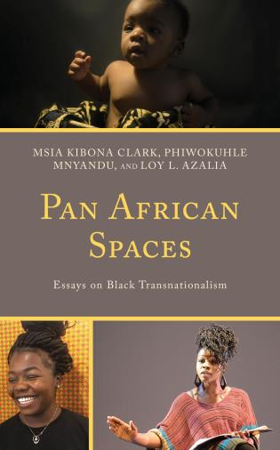Pan African Spaces Book Cover